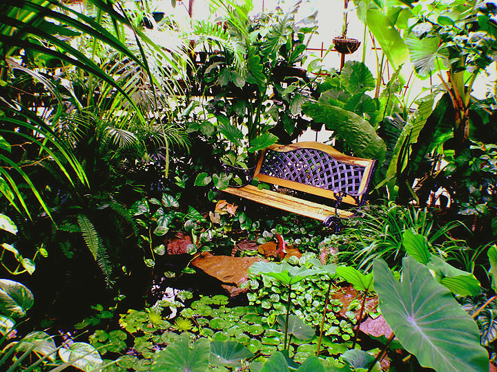 Pond bench in the Exotic Rainforest atrium, Siloam Springs, AR 72761, www.ExoticRainforest.com